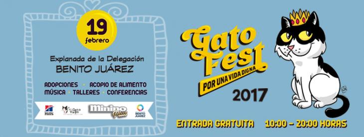 Gato Fest 2017.
